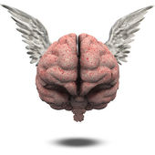 Winged Brain — Stock Photo