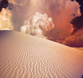 Desert Dune — Stock Photo