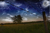 Starry Night and Farmers Fence and field — Stock Photo