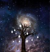 Tree of knowledge — Stock Photo