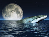 Whale on oceans surface with full moon — Stok fotoğraf