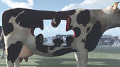 Cow Puzzle — Stock Photo