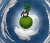 Caballo en esfera herboso — Foto de Stock