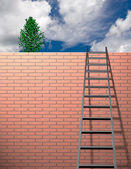 Ladder leans on wall with sky — Stock Photo