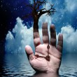 Stock Photo: Tree with Hand