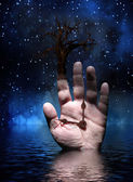 Tree with Hand — Stock Photo