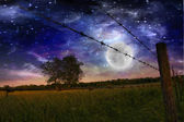 Starry Night and Farmers Fence and field — Stockfoto