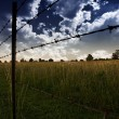 Clouds in sky and Farmers Fence in field — Stock Photo