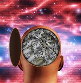 Geopende hoofd openbaart interne versnellingen — Stockfoto