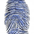 Stock Photo: Binary Code ID