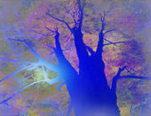 Tree Landscape — Stock Photo