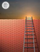 空の壁で傾いているはしご — ストック写真