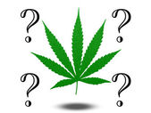 Marijuana Questions — Stock Photo
