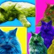 Foto de Stock  : Cat Art