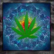 Marijuana Art — Stock Photo