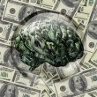 Financial Brain — Stock Photo