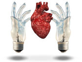 Two hand shaped light bulbs frame human heart — Stock Photo