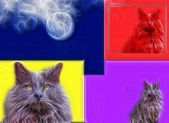 Whimsical Cat Art — Stock Photo