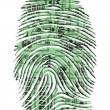 Fingerprint — Stock Photo #41003001