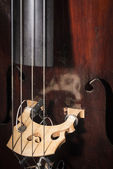 Double-bass Close-up — Stock Photo