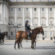 Royal Palace Madrid — Stock Photo #35013325