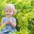 Cute little girl on the background color of dill — Stock Photo