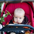 Stock Photo: Adorable baby boy in stroller