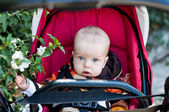Adorable baby boy in a stroller — Stock Photo