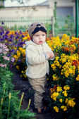 Cute toddler boy standing in the flowers — Stock Photo