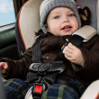 Постер, плакат: Toddler boy in the car seat