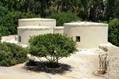 Reconstructed structures with trees — Stock Photo