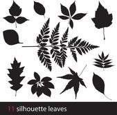 Silhouette leaves — Stock Vector