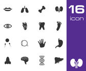 Vector black anatomy icons set — Stock Vector