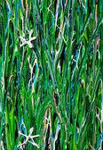 Textura de acrílico arte flor campo — Foto Stock