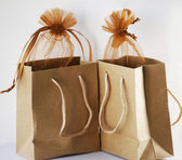 Two Brown paper gift bags — Stock Photo