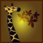 Giraffe vector — Stock Vector