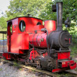 Old steam train in Rebecq — Stockfoto #17464167