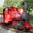 图库照片: Old steam train in Rebecq