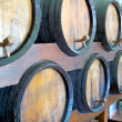 Wine barrels ready for tasting — Stock Photo