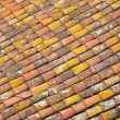 Alignement of tiles on a roof — Stock Photo
