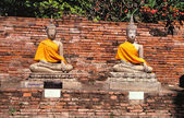 Buddha statues. Temple in Ayutthaya — Stock Photo