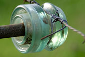 Insulator with barbed wire for electric fencing — Stockfoto