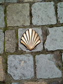 Milestone in shape of a shell inserted in the pavement — Stock Photo
