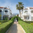 Stock Photo: Peacefull resort in southern spain featuring palmtree