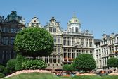 Bloemenshow in het grand place in Brussel — Stockfoto