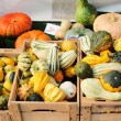 Stock Photo: Various decorative vegetables on market