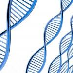 Image of DNA strand — Stock Photo