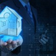 Businessman hand shows house model — Stock Photo #21815635