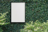 Empty modern style frame 3d on Green leaves wall — Stock Photo