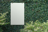 Blank paper card 3d Green leaves wall background — Stock Photo